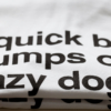 The quick brown fox - Das Font-T-Shirt